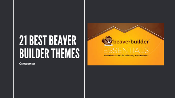 21 Best Beaver Builder Themes